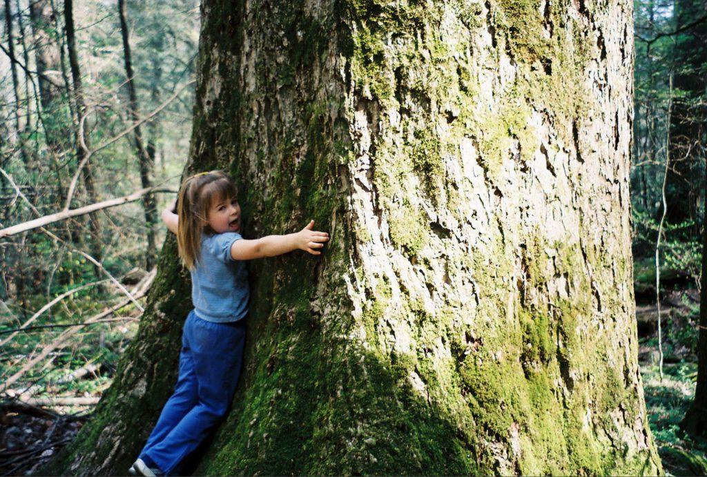 abraza un árbol